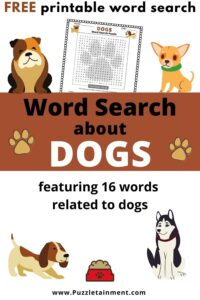 Dogs word search -  a word search about dogs for kids
